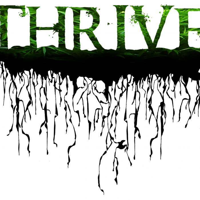 Thriving Beyond Illness
